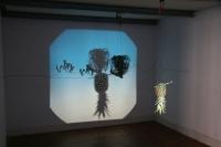 mixed media, light projection.