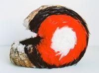 helmet, feathers