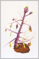 125 x 210cm Watercolor, paper